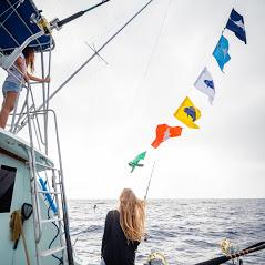 Five Star Sport Fishing